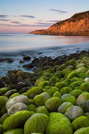 Stone World