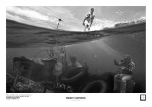 Wind Surfing and Pictures of Underwater World