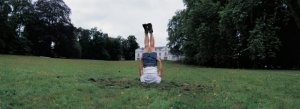 Chinese Book of Change by Li Wei