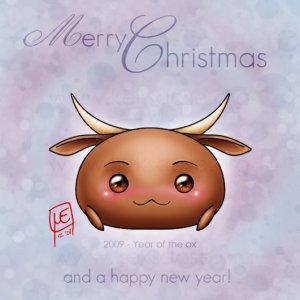 2009 - A Bull Year