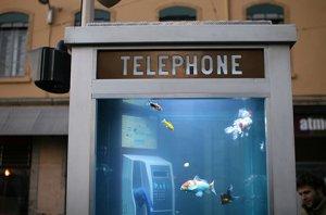 Phone Booth - Aquarium