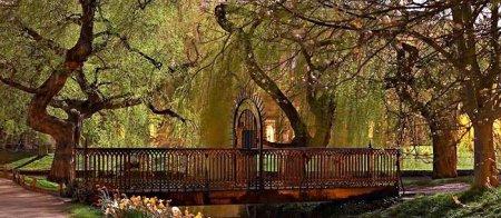 landscapes of cambridge