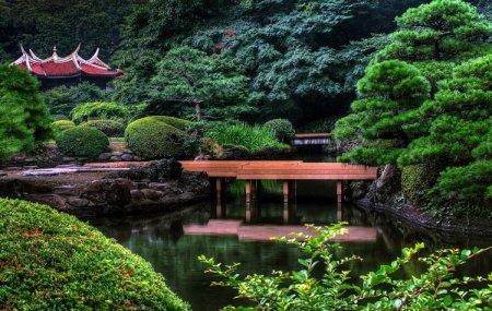 Japan Again